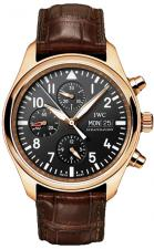 IWC / Pilot's Watches / IW371713