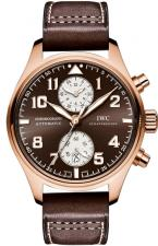 IWC / Pilot's Watches / IW387805